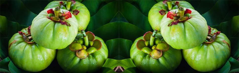 Qualnat Garcinia Cambogia | Con Extracto de Café + Té Verde | Reduce El Apetito
