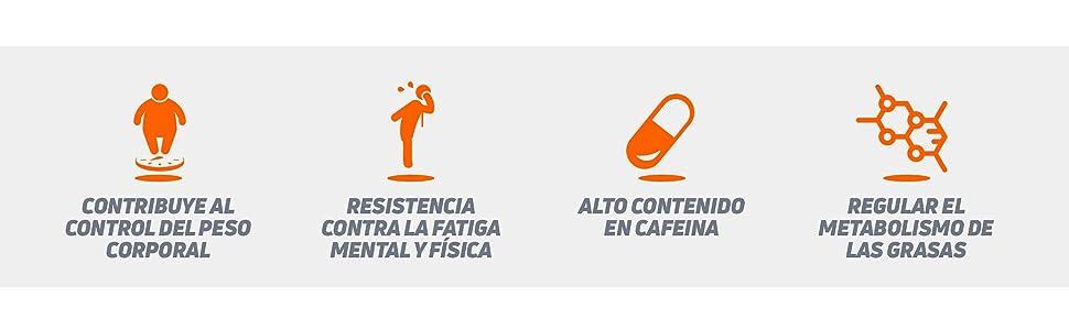 Evoburn HSN   Suplemento con Estimulantes para Mujeres y Hombres   Cafeína, Té Verde, Guaraná, Forskohlii   Alta Eficacia   Vegano, No-GMO, Sin ...