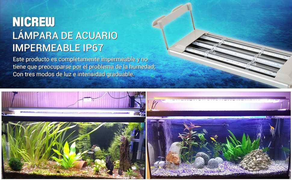 NICREW Iluminación LED para Acuario no solo puede proporcionar suficiente luz para los peces sino que también puede promover la fotosíntesis de las plantas ...