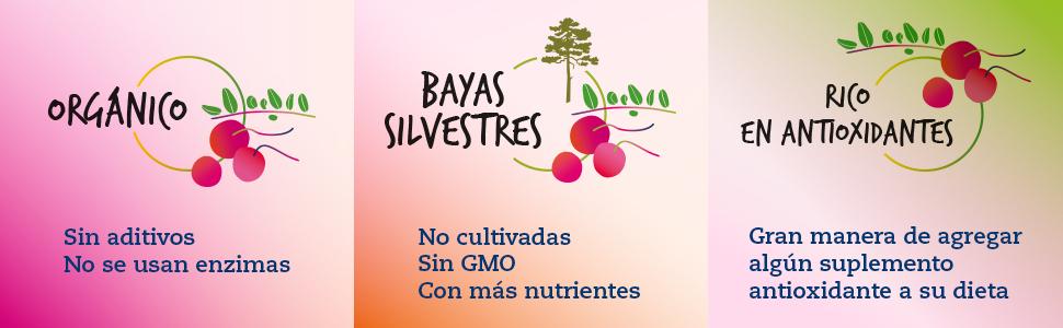 Jugo orgánico de arándanos agrios: 500 ml de LOOV, extraído 100% directamente de bayas exprimidas, contiene polifenoles, sin azúcar añadida, sin agua ...