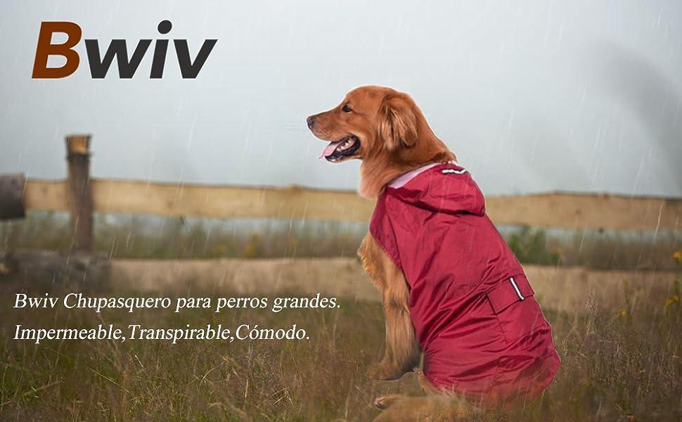 Una chuspasquero especialmente para los perros grandes en días lluviosos.