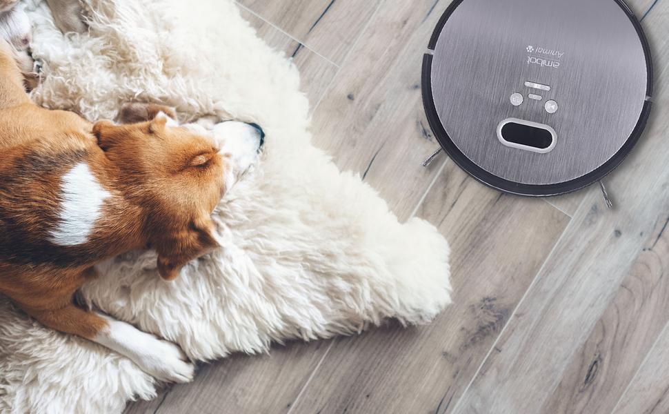 AMIBOT Animal Premium H2O – Robot aspirador y friegasuelos: Amazon ...