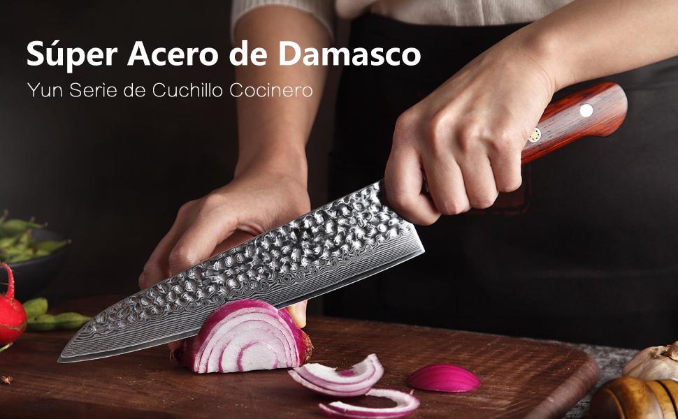 XINZUO 5 Piezas Set Profesional Cuchillo Cocina, 67 Capas Acero de Alto Carbono Damasco Cuchillo Chef Cuchillo Santoku Cuchillo de Pan con Rosewood ...