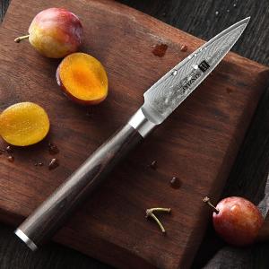 XINZUO Cuchillo de Pelar para Fruta Verdura 8,6cm de Acero Damasco Japonés 67 Capas Profesional Cuchillo de Cocina con Pakkawood Mango - He Serie