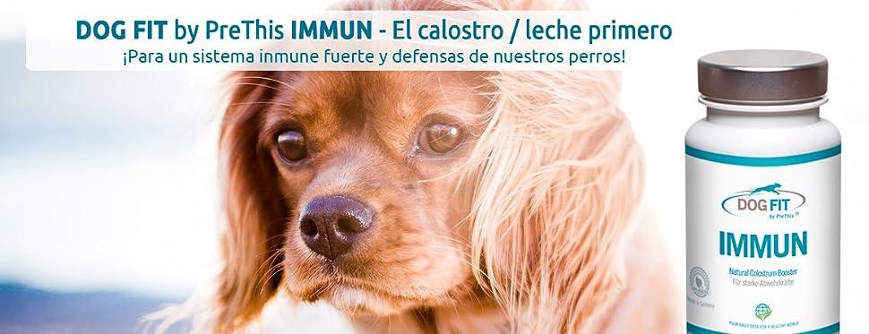 DOG FIT by PreThis IMMUN calostro - Fortalece el sistema inmunológico y las defensas para volver su perro vital