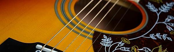 Dellwing – ¡Los profesionales para cuerdas de guitarras y más!