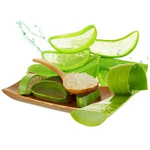 fuerte ALOE Aloe Vera Gel 100% Organico puro (100 ml)