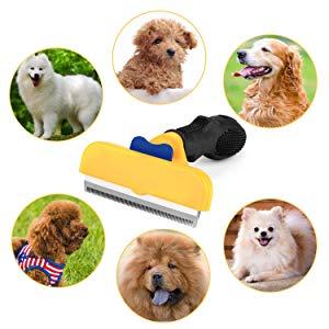 Cepillo Perros y Gatos
