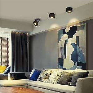 Dr.lazy 12W LED Focos para el techo,Focos de pared, Lámpara de techo, Focos de pared, Lámpara de salón, Luz de techo led, Plafón con Focos, IP20, ...
