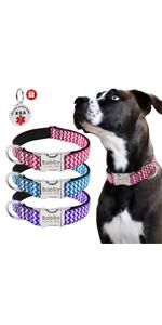 Beirui Collar de Perro Personalizado con Placa de Nombre Patrones ...