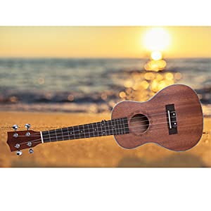 Incluso si ya tienes experiencia en el uso de instrumentos musicales, nuestra relación calidad-precio es única en el mercado. Aprovecha nuestro pack para ...