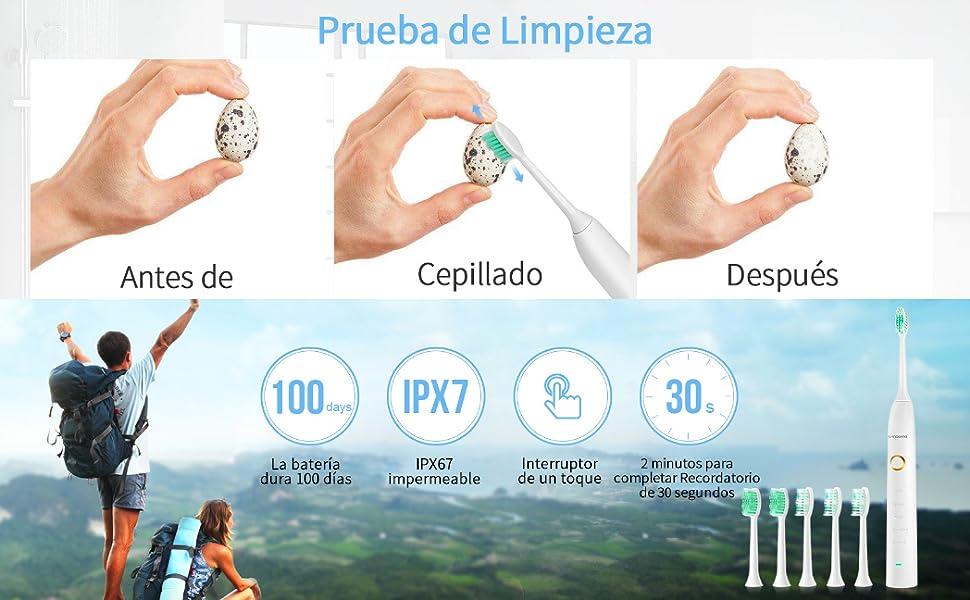 ¡Descubra su salud y seguro cepillo de dientes eléctrico sónico en LANDWIND!