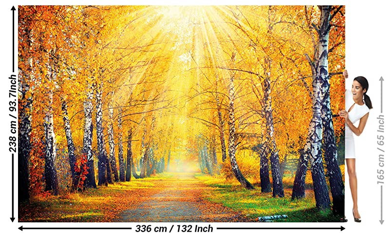 Great Art Foto Mural Otono Dorado Decoracion De Pared Bosque Y