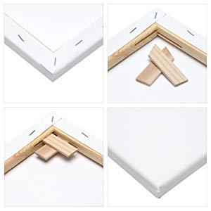 Artina Akademie FSC Set de 12 Lienzos con bastidor - 30x40 cm, 20x20 cm, 20x30 cm, 40x60 cm - 100% Algodón 280g/m²: Amazon.es: Juguetes y juegos