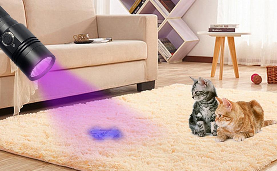 Las linternas de luz negra TATTU ayudan a revelar los secretos de su mascota y detectan orina de mascotas secas en alfombras, sofás, sábanas, etc.