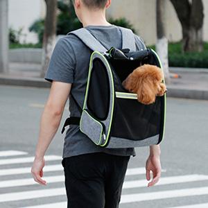 Transportín gato
