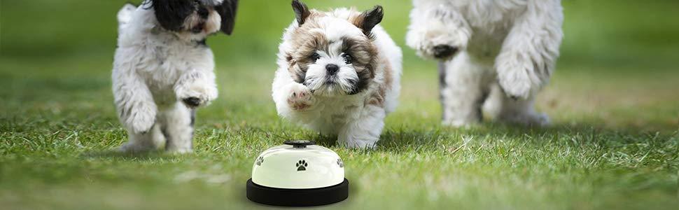 timbre para perro