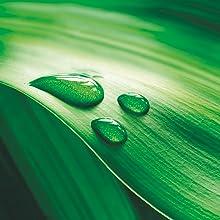 VESIsorb Ubiquinol-QH Coenzima Q10 100mg - Suplemento CoQ10 Kaneka Ubiquinol de alta absorción, fórmula patentada con efecto 6x más duradero, 30 ...