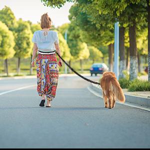 Libre tu manos: descubre la manera perfecta de comenzar a caminar, correr, trotar o incluso ir de excursión con tu perro. Debido al cinturón ligero y cómodo ...