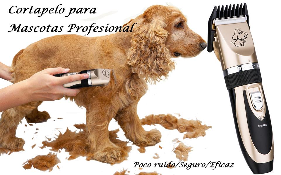 El cortapelos para perros inalámbrico de muy fácil uso, deja que su mascotas preferido siempre tienen una apariencia que muy moda y bonita en cualquier ...