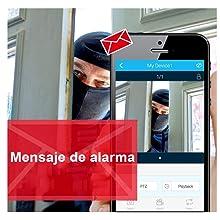 Todo en uno】Kit Cámaras de Seguridad Inalámbricas con 12 Monitor ...