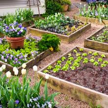 Landrip Sistema de Riego, DIY Riego por Goteo para Jardín Patio Paisajes Macetas Plantas, Kit de riego para Balcones(15 Metros): Amazon.es: Jardín