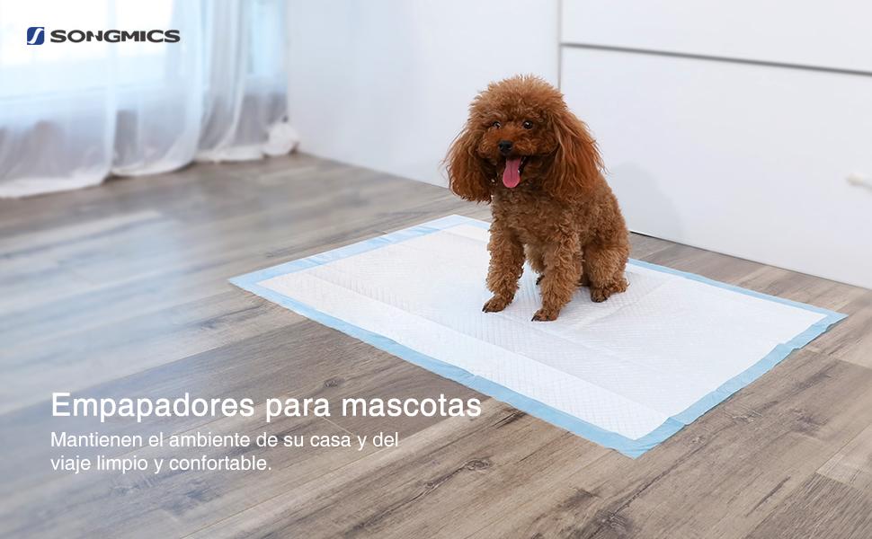 Además de le ayudan a educar a su mascota para hacer sus necesidades en el lugar adecuado, los pañales desechables también son prácticos y convenientes para ...