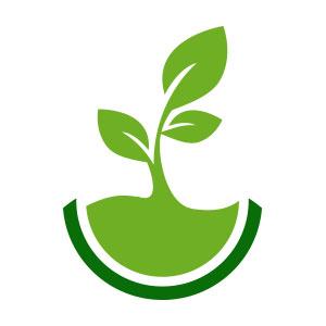 Ingredientes Naturales y Vegetales