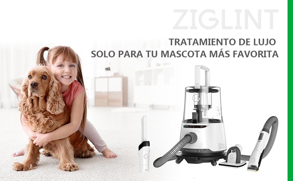 ZIGLINT Maquina de Esquilar Eléctrica Aspirador de Mano 2 en 1 P20 ...