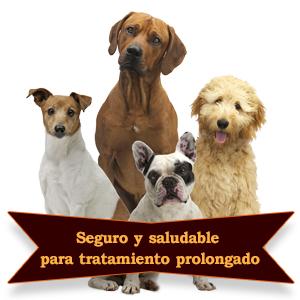 Kit de cuidado para orejas de perro: un tratamiento eficaz para perros. Proporciona un alivio rápido de las infecciones de oído, picazón, olores, ...
