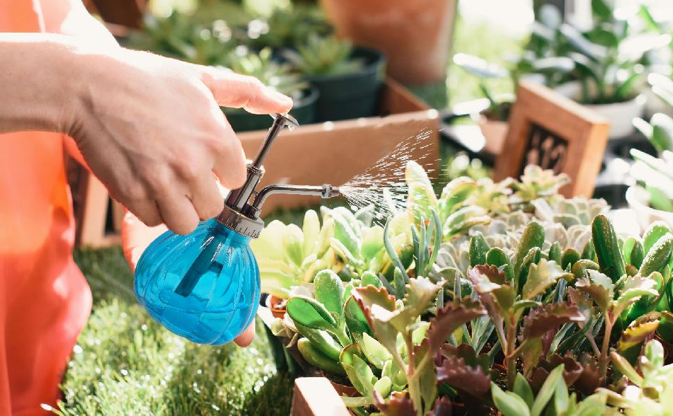 Gran rociador para regar pequeñas plantas como flores o hierbas aromáticas, dentro de su oficina y hogar.