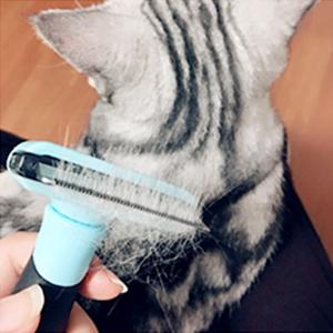 Cepillo peine para mascotas
