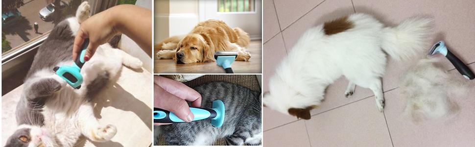 Peine Rascador Quitapelos para Mascotas