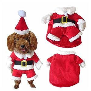 Disfraz adorable para perro con diseño único navideño de Papá Noel, perfecto para uso diario y fiestas.