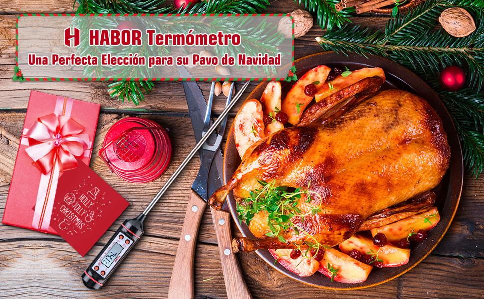 termometro cocina carne para su pavo de navidad