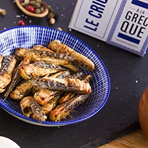 Insectos comestibles, comer insectos
