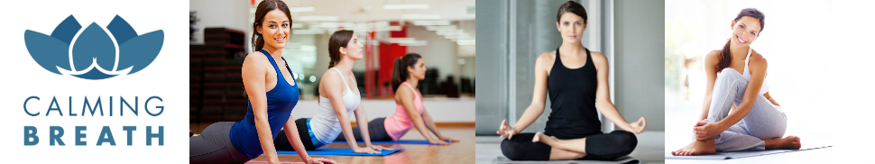 CalmingBreath Yoga Bolster Rectangular, algodón - alforfón Lleno - Colores fantásticos!