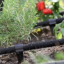GARDENIX 50 Pieza Anclajes AquaPEG para Manguera de riego para jardín: Amazon.es: Jardín