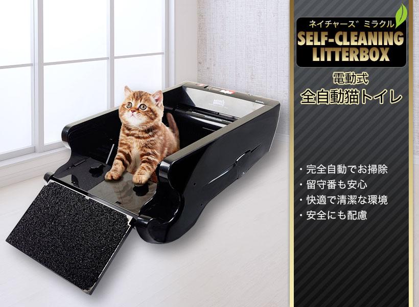 猫 自動 トイレ