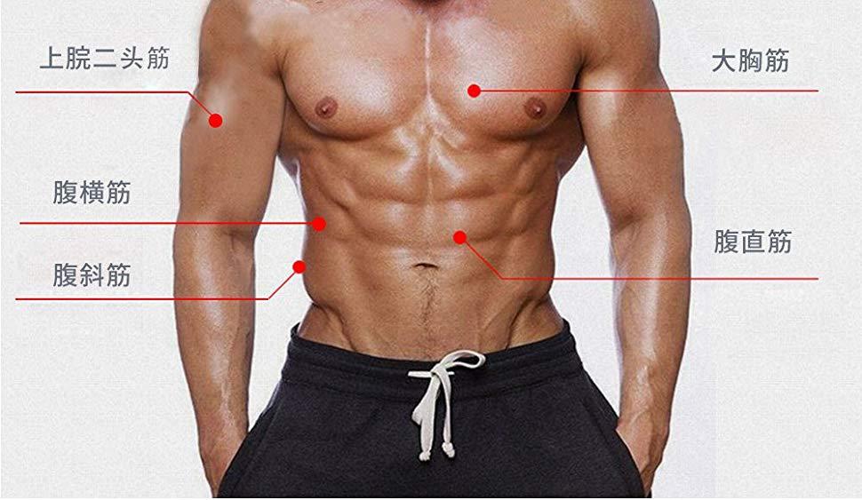 筋 斜 アブ 腹 ローラー ダンベルを使った腹筋メニュー7選!腹筋下部・上部・腹斜筋・腹横筋を高負荷で鍛える方法