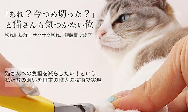 子猫 爪 切り