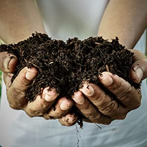 compost, garbage bags, compostable bags