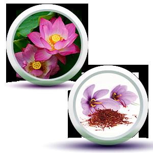 Lotus & Saffron