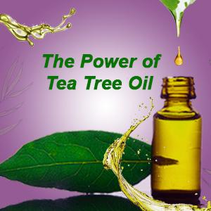 Tea tree oil in fresh look face wash