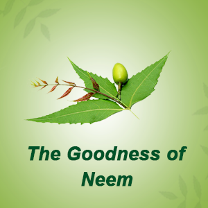 The goodness of Neem