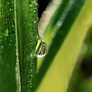 Droplet shot