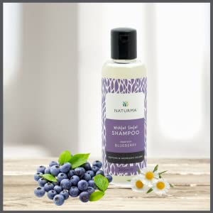 blueberry seed oil chamomile shampoo dry rough frizzy hair antioxidant rich nontoxic safe healthy
