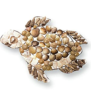 diy fridge magnets, turtle, tortoise, craft activity, do it yourself, seashells, hobby ideas, hobby