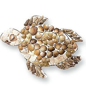 fridge magnets, diy fridge magnets, sea shells, do it yourself activity, craft activity, hobby