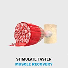 stimulate faster muscle recovery